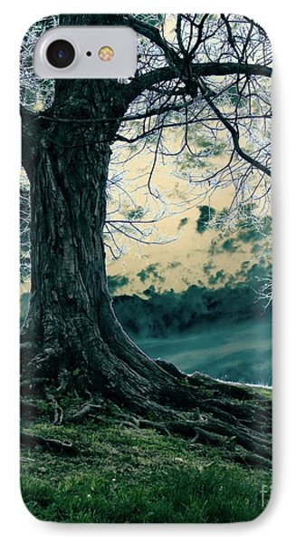 Exposed Roots IPhone Case by Misha Bean
