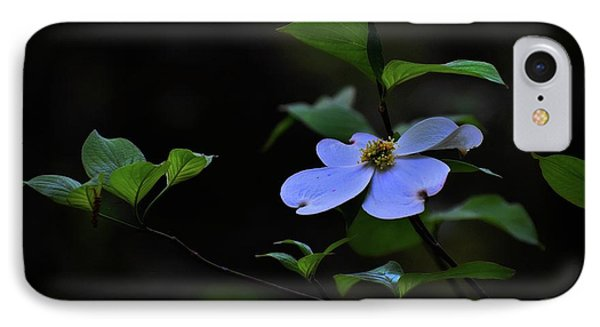 IPhone Case featuring the photograph Exquisite Light by Skip Willits