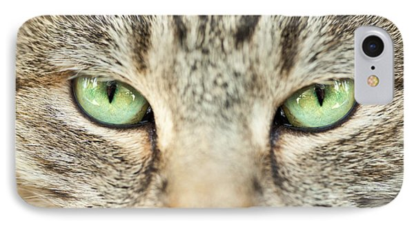 Extreme Close Up Tabby Cat Phone Case by Sharon Dominick