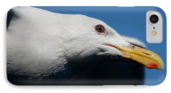 Eye Of A Seagull IPhone Case by Sumoflam Photography