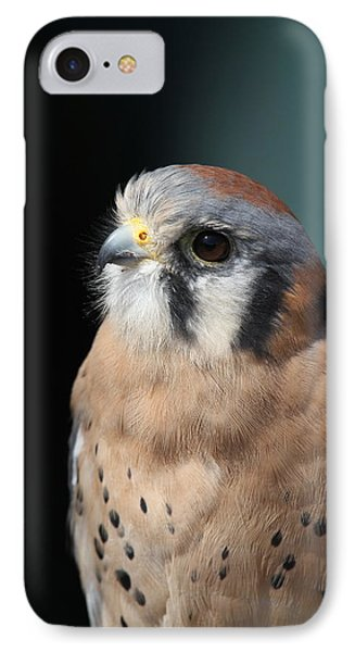 IPhone Case featuring the photograph Eye Of Focus by Laddie Halupa