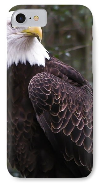 Eye Of The Eagle IPhone Case by Trish Tritz