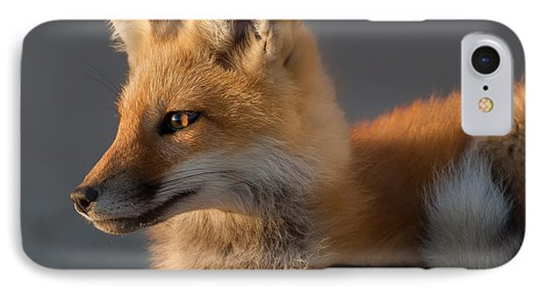 Eye Of The Fox IPhone Case by Bill Wakeley