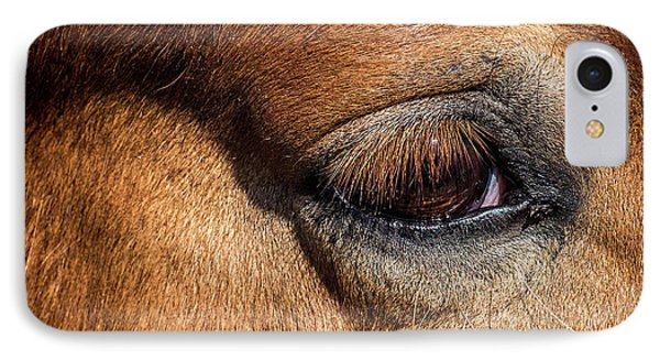 Eye Of The Horse IPhone Case