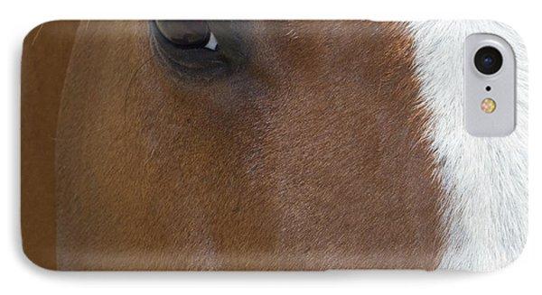 Eye On You Horse IPhone Case