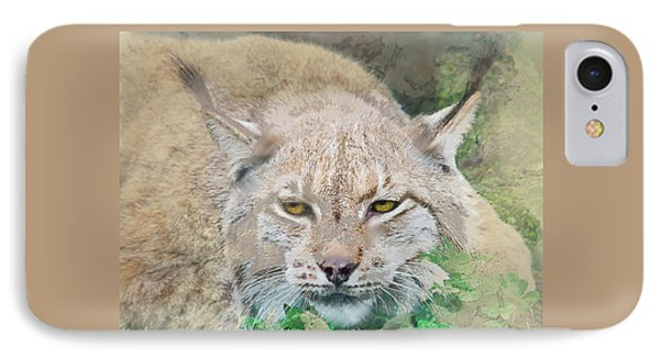 Eye To Eye With A Lynx In The Grass IPhone Case by Elaine Plesser