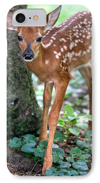 IPhone Case featuring the photograph Eye To Eye With A Wide - Eyed Fawn by Gene Walls