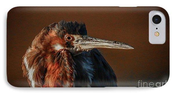 Eye To Eye With Heron IPhone Case