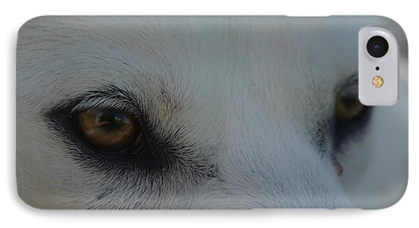 Eyes Of The Wolf - In Her Eyes IPhone Case by Robyn Stacey