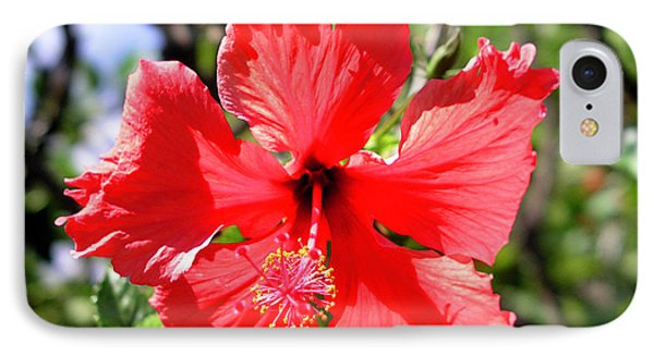 F20 Red Hibiscus Phone Case by Donald k Hall