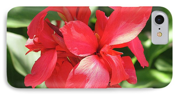 F22 Cannas Flower Phone Case by Donald k Hall