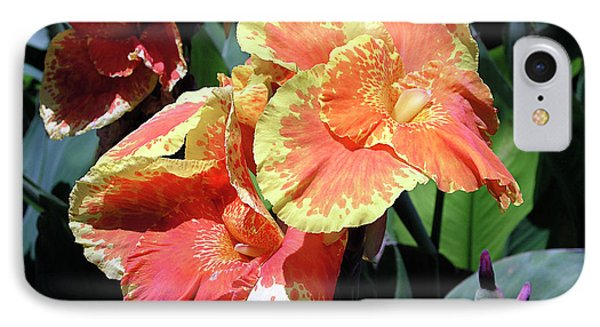 F24 Cannas Flower Phone Case by Donald k Hall