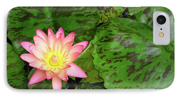 F6 Water Lily Phone Case by Donald k Hall