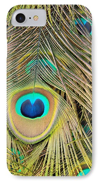 IPhone Case featuring the photograph Fabulous Feathers by Margaret Bobb
