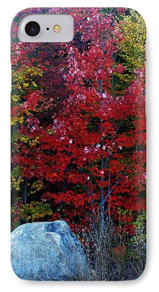 Fabulous Foliage IPhone Case