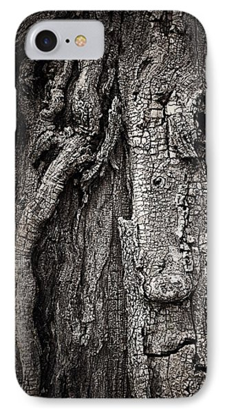IPhone Case featuring the photograph Face In A Tree by JoAnn Lense