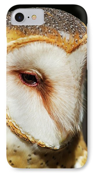 IPhone Case featuring the photograph Face Of Athena by Arthur Dodd