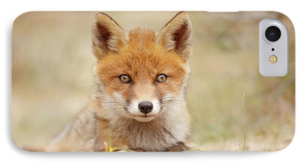 Face Of Innocence - Red Fox Kit IPhone Case by Roeselien Raimond