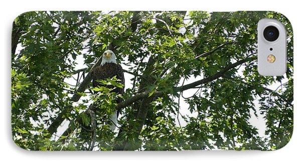 IPhone Case featuring the photograph Face The Eagle by Donald C Morgan
