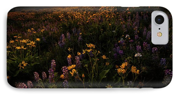 IPhone Case featuring the photograph Facing The Day by Mike Lang