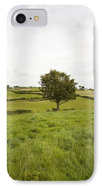 Fairy Tree In Ireland IPhone Case