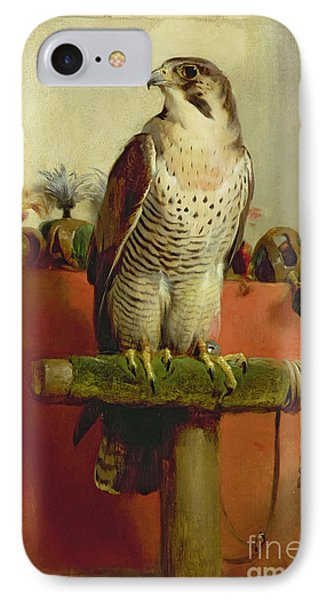 Falcon IPhone Case by Sir Edwin Landseer