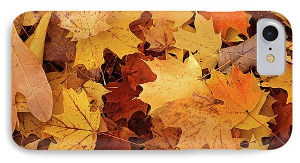 Fall Carpet 10 IPhone Case