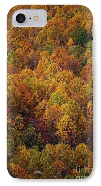 Fall Cluster IPhone Case by Eric Liller