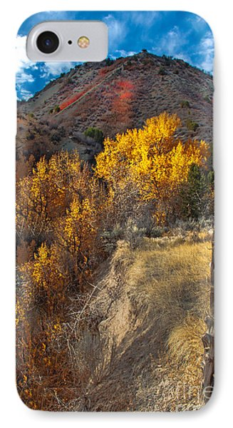 Fall Color Along Fence Line IPhone Case