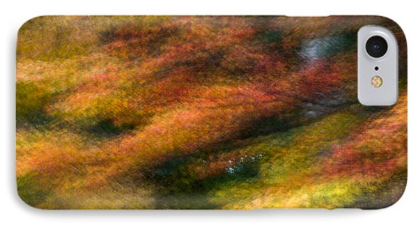 Fall Color Impressions IPhone Case