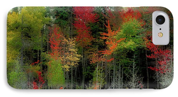 IPhone Case featuring the photograph Fall Color Panorama by David Patterson