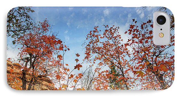 Fall Colors Along West Fork Trail IPhone Case