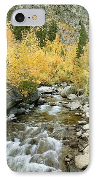 Fall Colors And Rushing Stream - Eastern Sierra California IPhone Case by Ram Vasudev