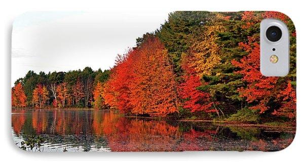 Fall Colors In Madbury Nh Phone Case by Nancy Landry