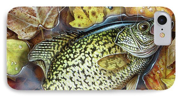 Fall Crappie IPhone Case by Jon Wright