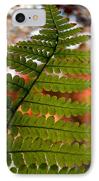 IPhone Case featuring the photograph Fall Fern by Gwyn Newcombe