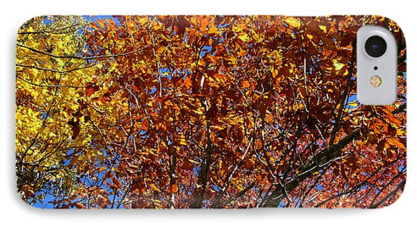 Fall IPhone Case by Flavia Westerwelle