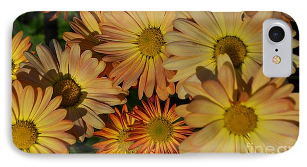Fall Flowers In Madison  IPhone Case