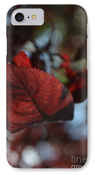 Fall Foliage 2 IPhone Case by Eva Maria Nova