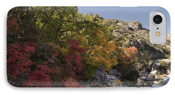IPhone Case featuring the photograph Fall Foliage In The Guadalupes by Melany Sarafis