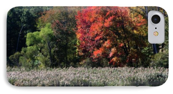 IPhone Case featuring the photograph Fall Foliage Marsh by Smilin Eyes  Treasures