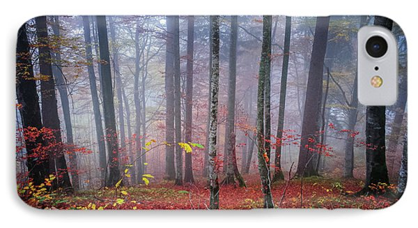 IPhone Case featuring the photograph Fall Forest In Fog by Elena Elisseeva