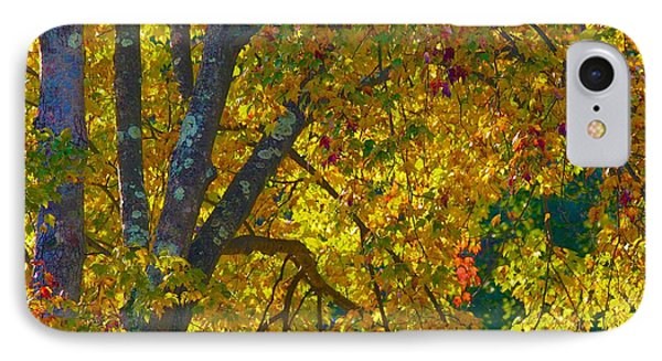 IPhone Case featuring the photograph Fall Glory On Route 53 by Polly Castor