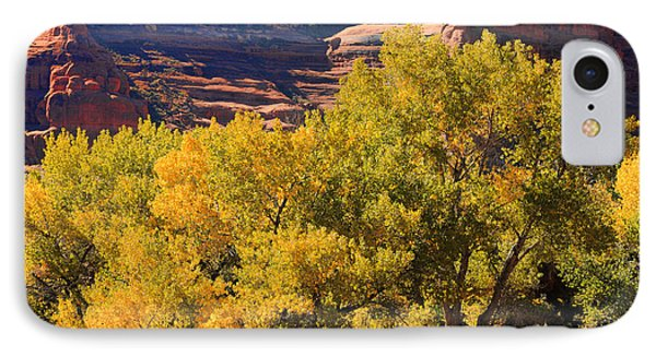 Fall In The Arches IPhone Case by Lawrence Christopher