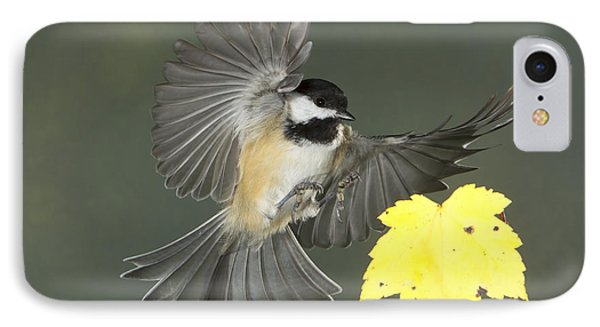 IPhone Case featuring the photograph Fall Is In The Air by Gerry Sibell
