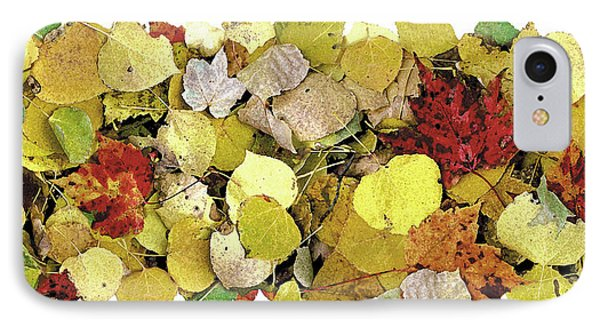 Fall Leaf Vignette Phone Case by JQ Licensing