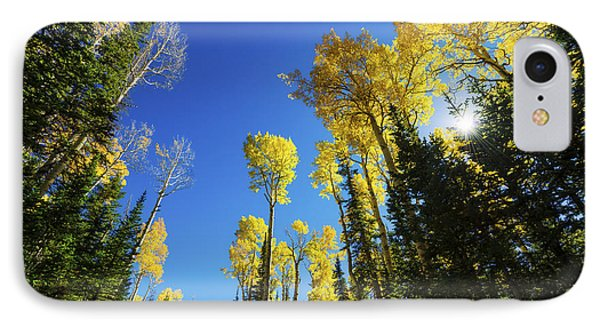 Fall Light IPhone Case by Chad Dutson