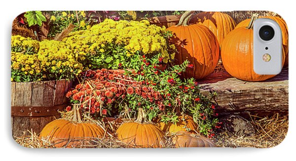 IPhone Case featuring the photograph Fall Pumpkins by Carolyn Marshall