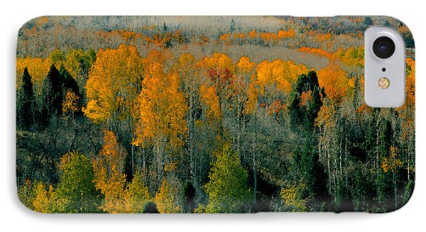 Fall Ridge Phone Case by David Lee Thompson