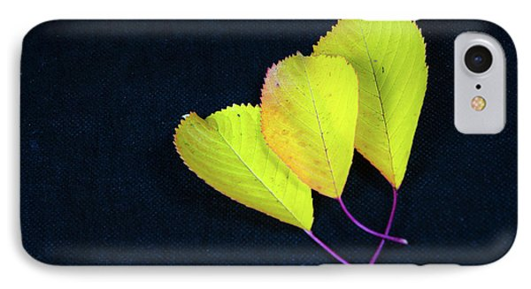 IPhone Case featuring the photograph Fall Season Colors by Kennerth and Birgitta Kullman